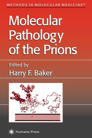 Molecular Pathology of the Prions Molecular ... - Webbbiology