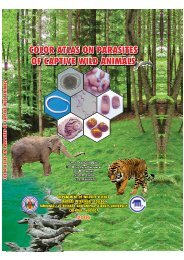 Color Atlas on Parasites of captive Wild Animals
