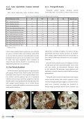 İstanbul'da Bulunan Erken Bizans Dönemi Dini Yapılarında ... - Page 6