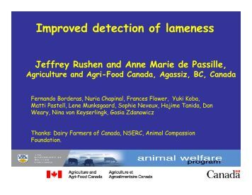 Improved detection of lameness - Animal Welfare Science Centre