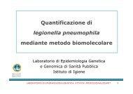 Laboratorio di Biologia molecolare Legionella - Istituti