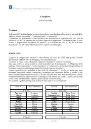 Cavolfiore - ciclo invernale - Regione Campania