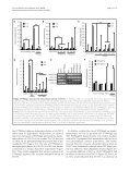 Protein tyrosine phosphatase Meg2 dephosphorylates signal ... - Page 7