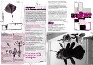 n°2 - START - magazine d'art contemporain pour les jeunes   Artistes