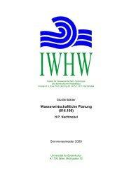 Wasserwirtschafliche Planung816106_020309korr.pdf - Institut für ...