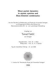 Tomaz Fabcic - 1. Institut für Theoretische Physik - Universität Stuttgart