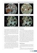 HORASAN HARÇLARININ İNCELENMESİ - İSTANBUL (1. Bölge) - Page 7
