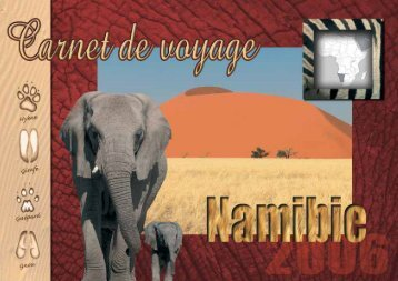 Fabuleuse Namibie - Colors Of WildLife