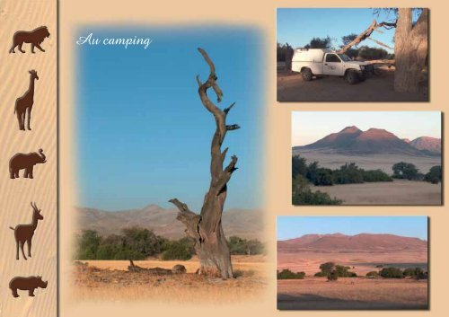 Fabuleuse Namibie - Colors Of WildLife
