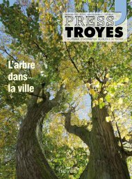 Press3-N-214 - Ville de Troyes