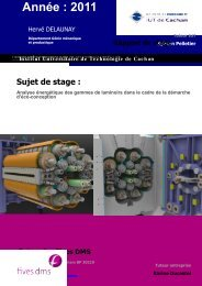rapport_stage hdelau.. - Index of