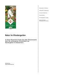 Natur im Klostergarten