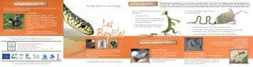 Fiche Nature : Les reptiles - Parc interrégional du Marais poitevin