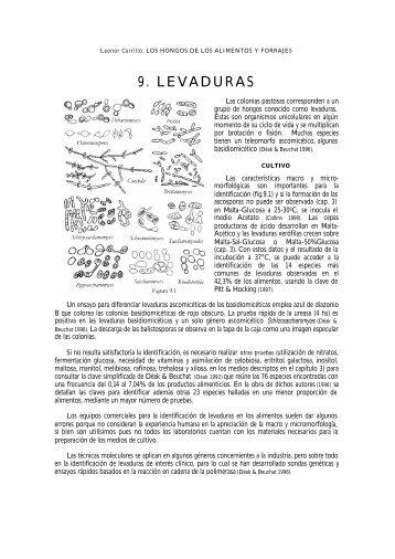 9. LEVADURAS