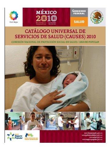 Catálogo Universal de Servicios de Salud 2010 (CAUSES).