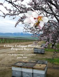 Colony Collapse Disorder - Agricultural Research Service