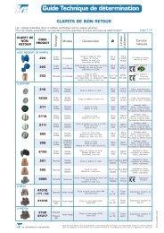Internet - E-Clapets.pmd - L.R.I (La Robinetterie Industrielle)