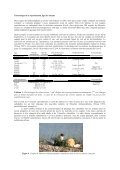 Première nidification de la mouette mélanocéphale (Larus ... - Page 2
