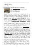 Migration des chiroptères aux cols de Jaman et de Bertolet - SENS - Page 3