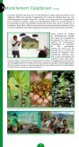 Le caillou vert n°7 - WWF France - Page 2