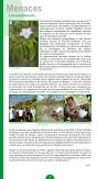 Le caillou vert n°7 - WWF France - Page 4