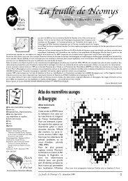 Télécharger la Feuille de Neomys n°3 - Bourgogne-Nature