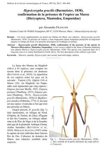 Bulletin 117(4) - Biodiversidad Virtual
