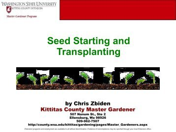 Seed Starting and Transplanting - WSU Extension Counties