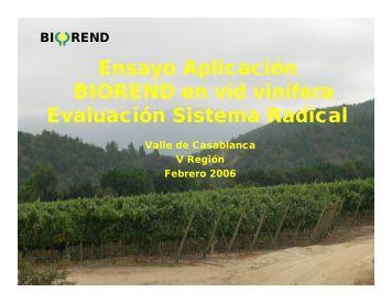 ensayo biorend en vides viniferas - Idebio