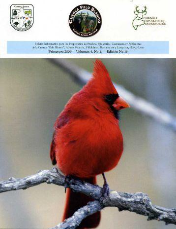 Boletín Volúmen 4 No. 4 - Consejo Estatal de Flora y Fauna ...