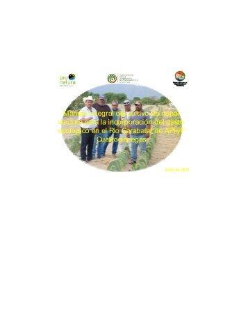 Manejo integral del cultivo de nopal verdura para la ... - FMCN