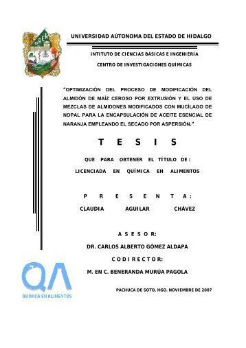 T     E     S     I     S - Universidad Autónoma del Estado de Hidalgo