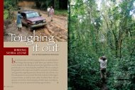 Toughing it out: birding Sierra Leone