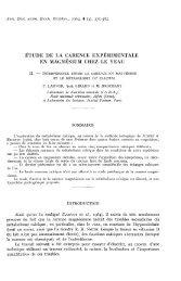 PDF file (667.4 KB)