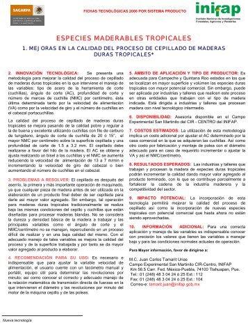 MEJORAS EN LA CALIDAD DEL PROCESO DE ... - UTEP