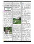 2007_2 numeris - Page 6