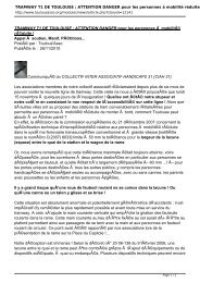 TRAMWAY T1 DE TOULOUSE : ATTENTION ... - Handi-Social