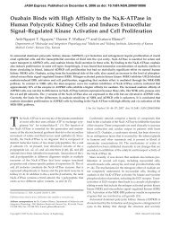 Ouabain Binds with High Affinity to the Na,K-ATPase in Human ...