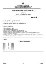 Skemë vlerësimi Gjuhë Shqipe dhe Letërsi, Profesionale - Varianti A