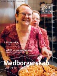 Social Fokus - Servicestyrelsen