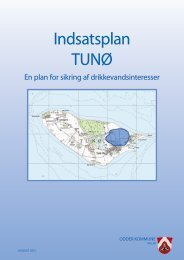 Indsatsplan TUNØ - Odder kommune