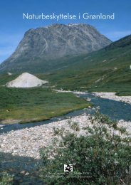 Naturbeskyttelse i Grønland - Grønlands Naturinstitut