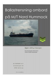 Ballastrensning ombord på MT Nord Hummock.pdf - Aarhus ...