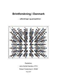 Brintforskning i Danmark