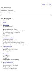 Femer Baelt Forbindelsen - Forundersøgelser Resume