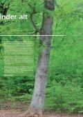 FACIT Juni 2013 - Buus Jensen - Page 3