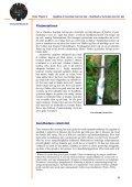 Om Antonovskys salutogenetiske idé - Danske Fysioterapeuter - Page 6
