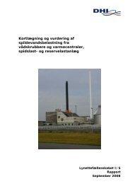 Kortlægning og vurdering af spildevandsbelastning fra ...