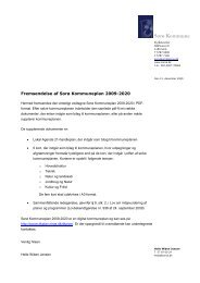 Sorø Kommuneplan 2009-2020 - Sorø Forsyning