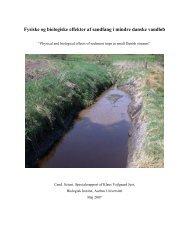Fysiske og biologiske effekter af sandfang i mindre danske vandløb